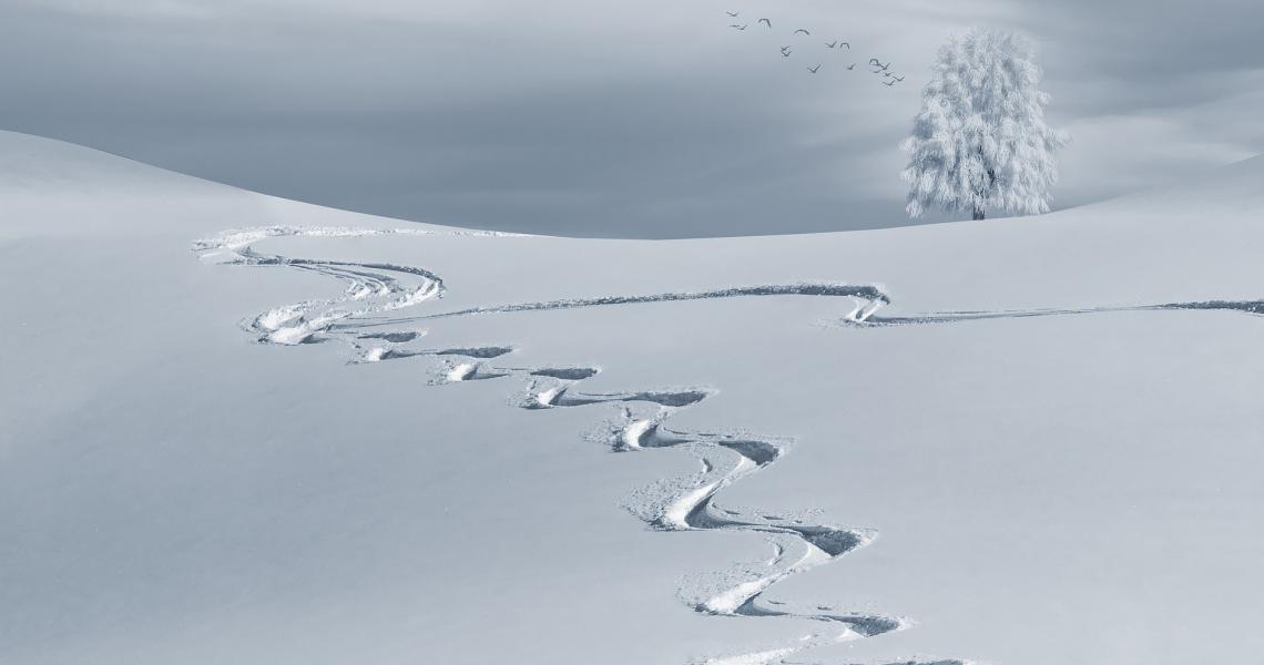 Ski et raquettes à neige Luz-Ardiden, Tourmalet, Gavarnie